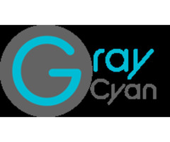 seo company - Web Designing - Graycyan