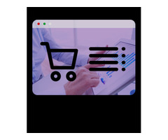 custom ecommerce  development service provider company