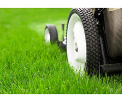 Looking for Lawn Care Service in Mississauga?