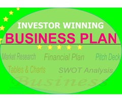 Investor-Ready Business Plan in 7 days