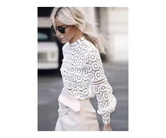 Solid Elegant Round Neckline Long Sleeve Blouses (1645343895)