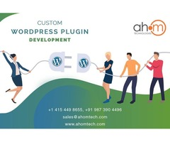 WordPress plugin development by top WordPress plugin development company