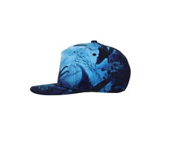 NUZADA Dacron Baseball Cap Flat Brim Hat Hip-Hop 3D Pattern Men Women Adjustable Cycling Hat