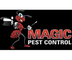 Residential bed bugs Control