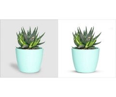 Online Product Image Background Remove and Clipping Path Service