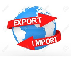Export  promotion services