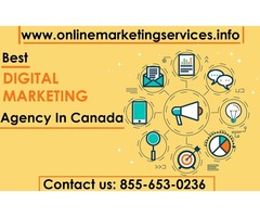 Best SMO Services in Canada | SMO Consulting Agency
