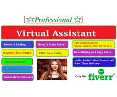 I will do virtual assistant for data entry, web research, copy paste,  product listing