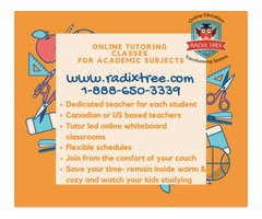 In Home Math-English-Science Online Classes  Best Tutors.$100/Mo
