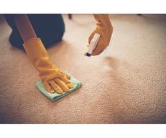 Professional Carpet Cleaning Calgary, Alberta